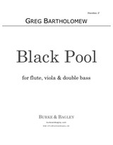 Black Pool for flute, viola & double bass